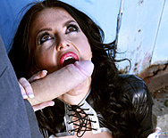 Catch A Thief - Stacey Lacey - 2